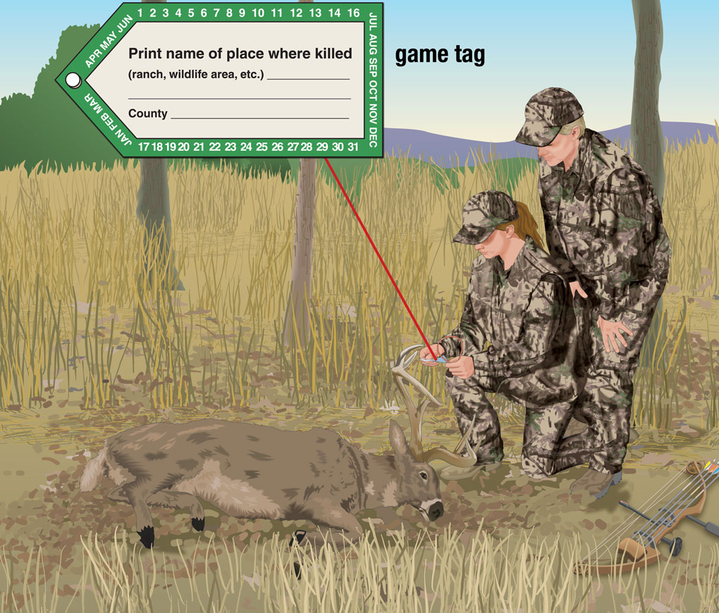 Hunter placing game tag on dead deer