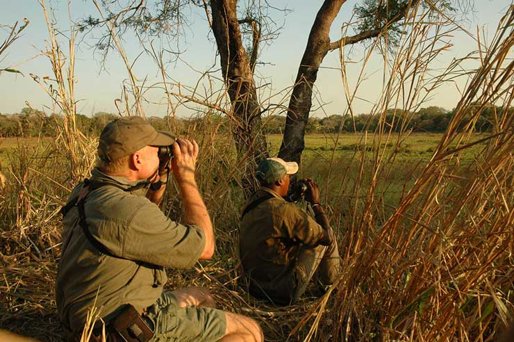 Two hunters glassing