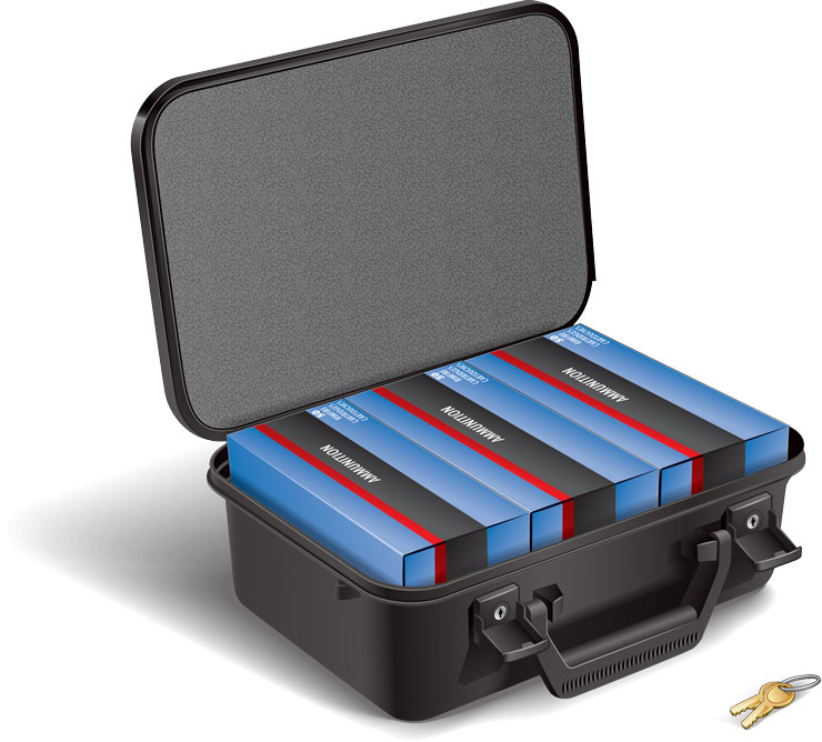 Ammunition travel case