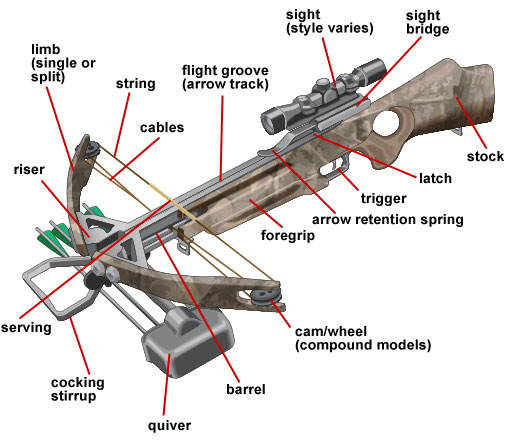 Compound crossbow diagram identifying parts