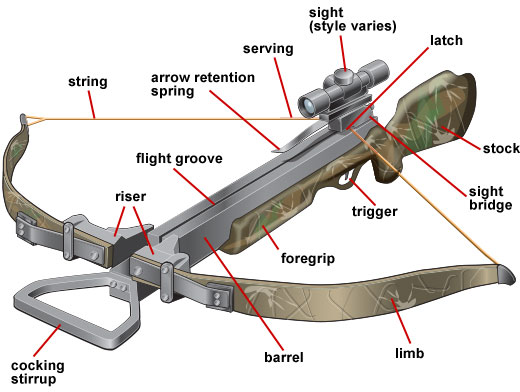 Recurve crossbow diagram identifying parts