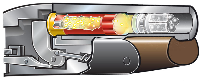 Cutaway: Expanding gas forces the wad and shot out of the plastic body of the shell