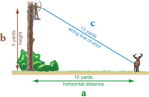 Judging distance from a treestand: a = 12 yards horizontal distance to the target, b = 5 yards height in treestand, c = 13 yards along line of shot
