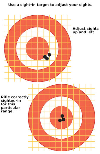 Use a sight-in target to adjust your sights