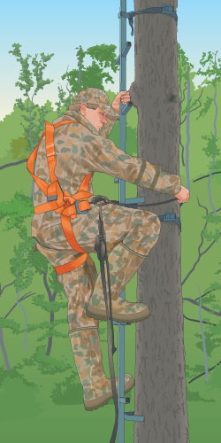 Climbing a tree stand